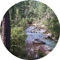 Río-Borosa-Cazorla