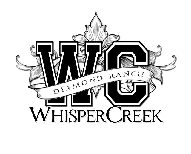 Diamond Ranch Academy | Whisper Creek Campus for 16-18 year old girls.