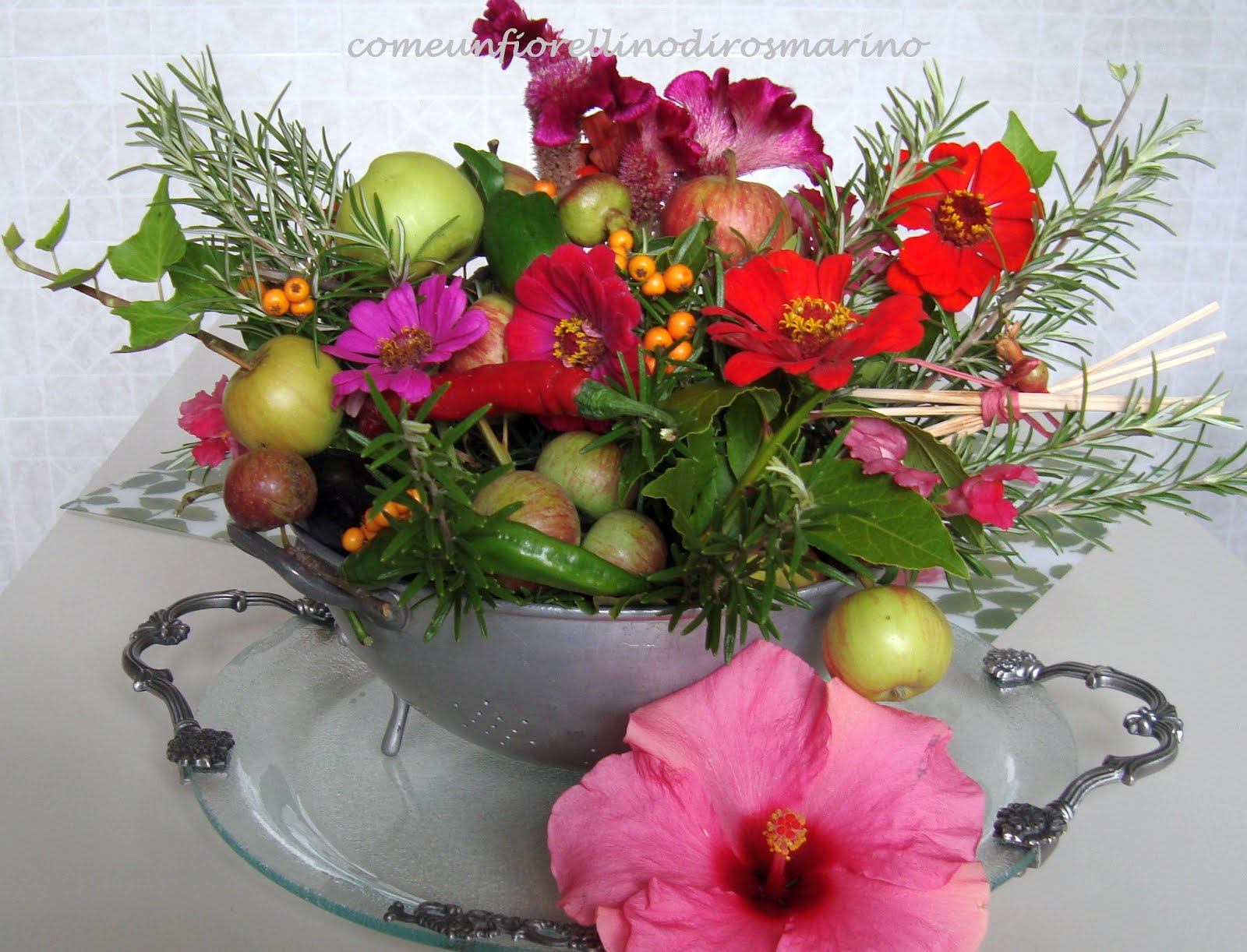 Preferenza Come un fiorellino di rosmarino: BUON COMPLEANNO FIORELLINO ZE03
