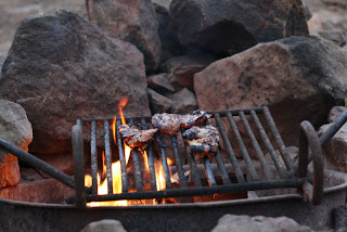 grilling chicken firepit camping