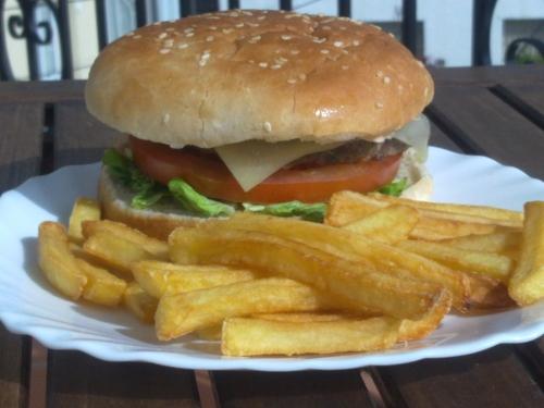 cocina-solar-hamburguesa-2
