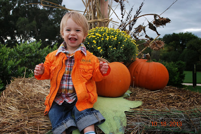 1 year old in pumpkins