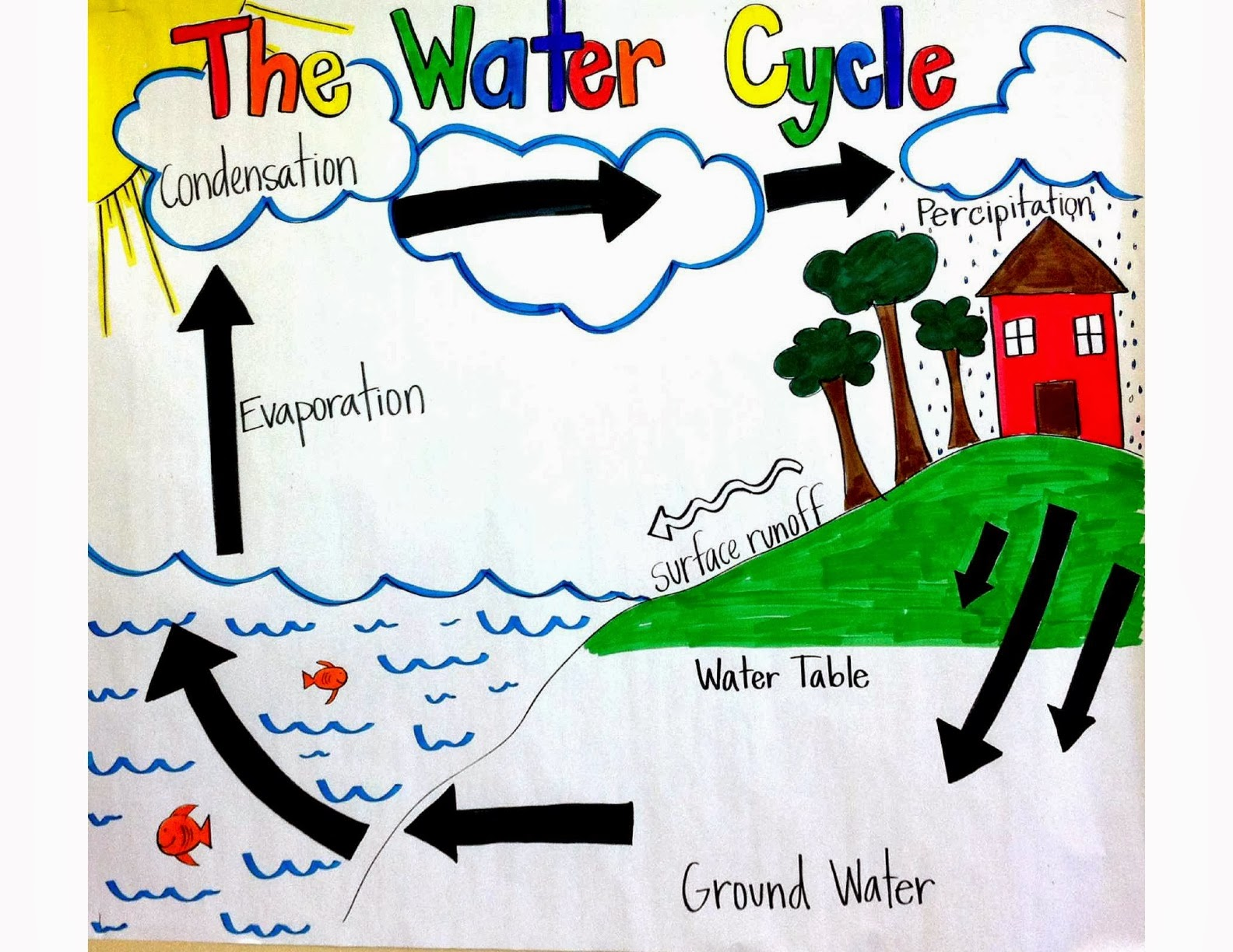 water cycle poster project Water cycle poster project you have been learning about the water cycle the water cycle is continually changing from liquid water to water vapor to ice.