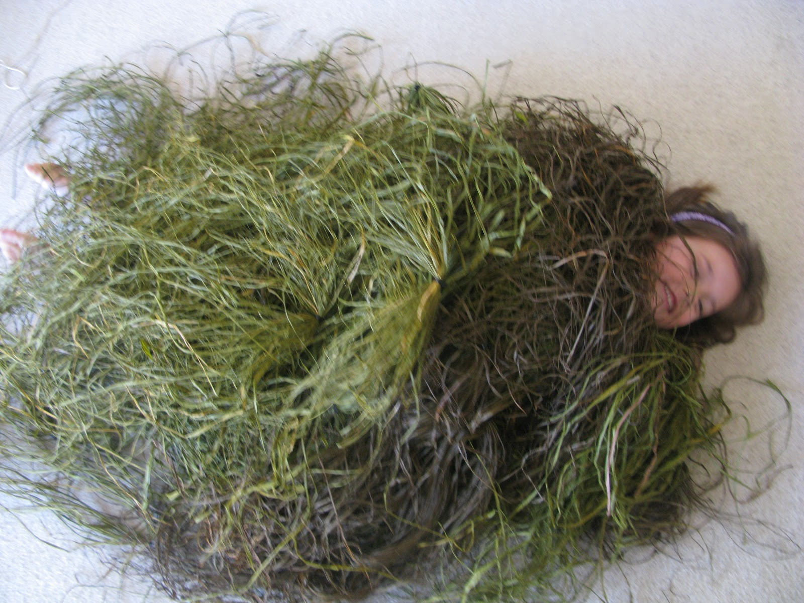 Snuffit Home Real Grass Amp Killer Weed