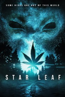 Star Leaf cover