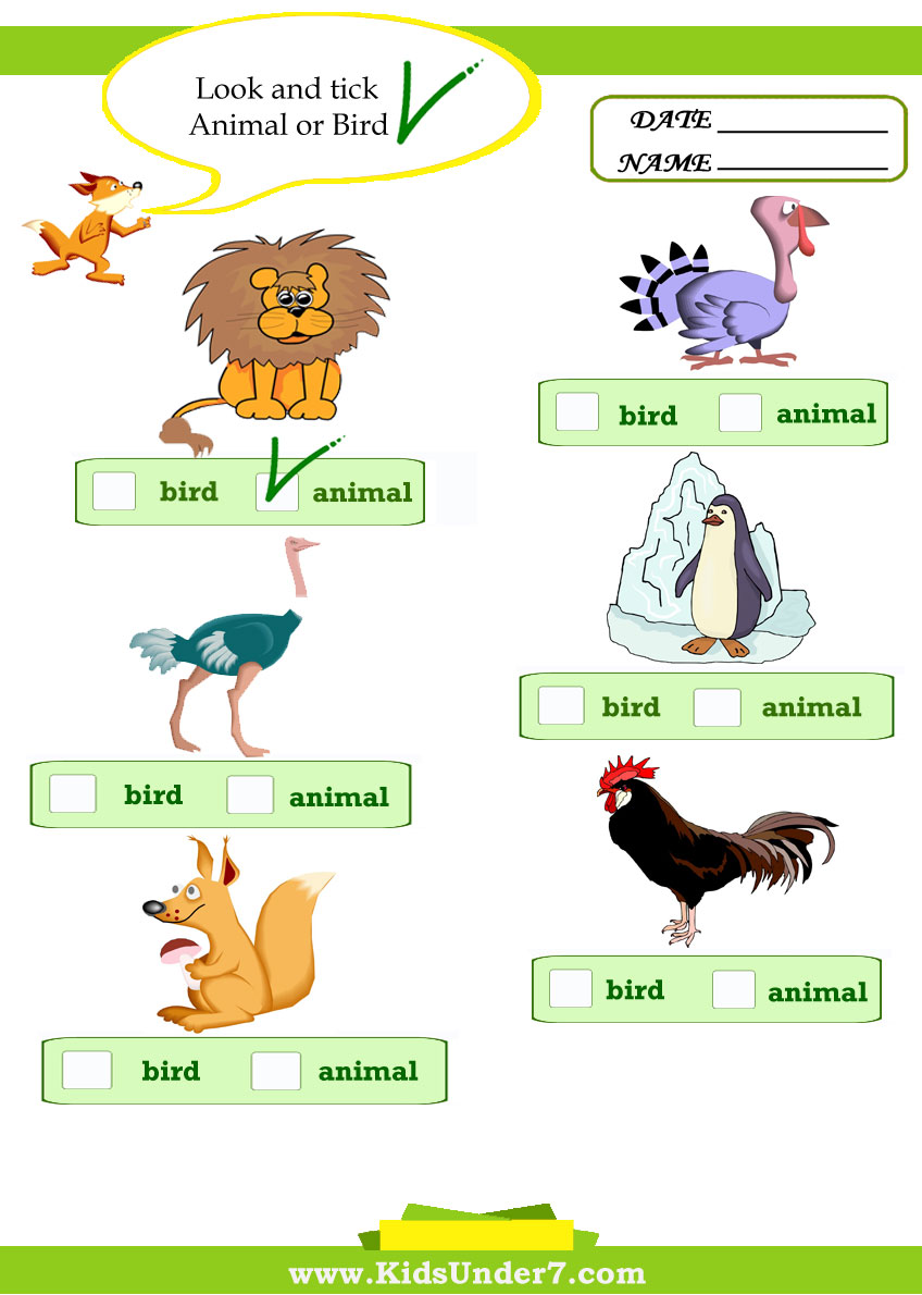 Choose a correct word or correct group. Look and tick. Click on image ...
