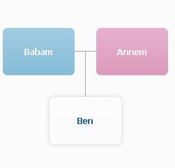 Aile soy ağacı oluşum şeması.