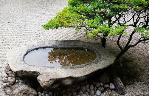 Plantas m gicas los jardines zen - Arena para jardin zen ...