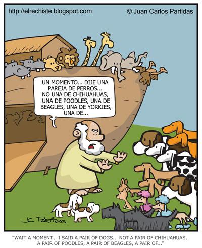 Perros en el Arca de Noe