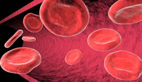 http://2.bp.blogspot.com/-KqZL6EUnxzM/TbNloIB4O_I/AAAAAAAAAMQ/oD7BkyE4I5s/s1600/saiba-como-prevenir-e-curar-a-anemia.jpg