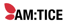 AM:TICE