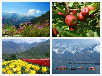 Voyage Jammu and Kashmir en Inde du Nord