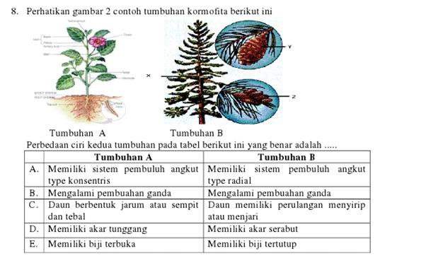 BIOLOGI GONZAGA: PREDIKSI BIOLOGI UN 2013 IMAGE