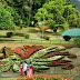 Beautiful Place Hakgala Botanical Garden