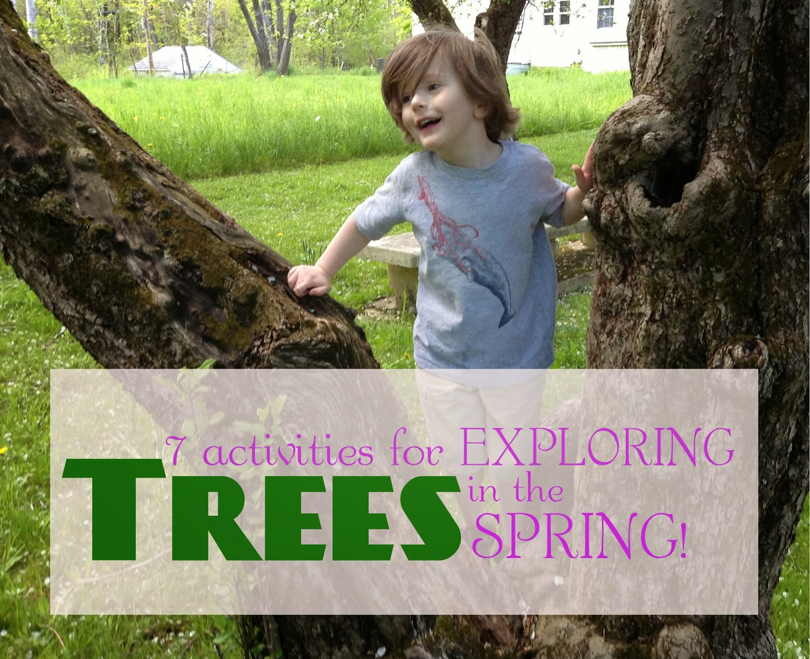 Get outside & explore the changing trees this spring with these 7 activities. (free printable)