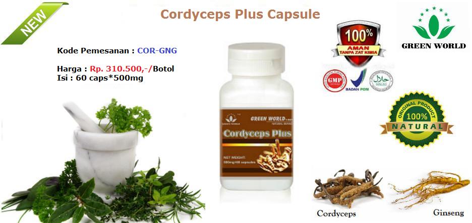 Cordyceps Plus Capsule