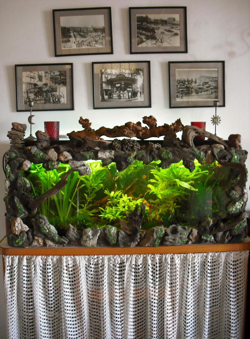 Joan seriny decoraci n de una pecera trencad s - Decoracion de peceras ...