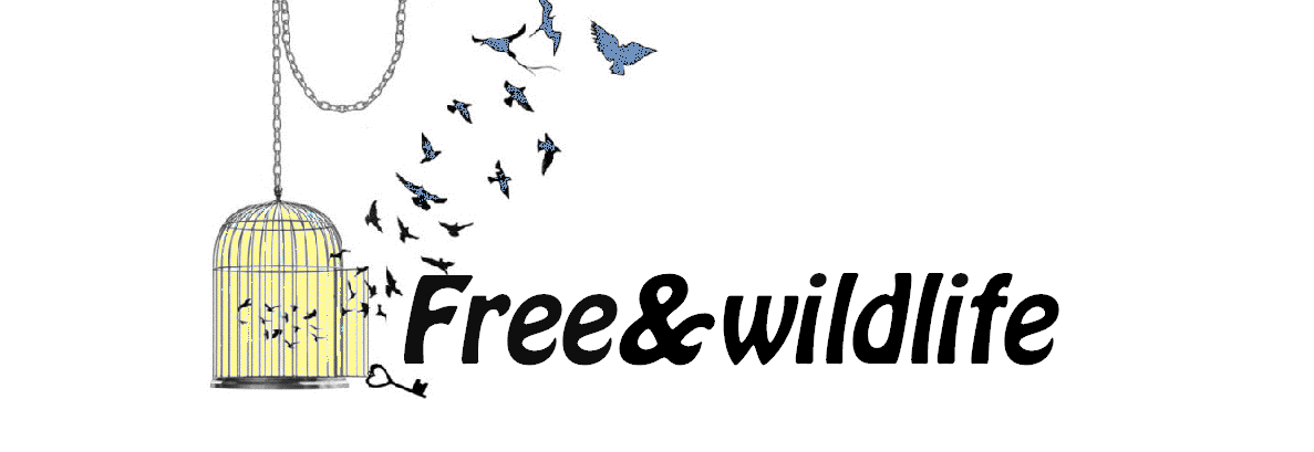 FreeAndWildLife