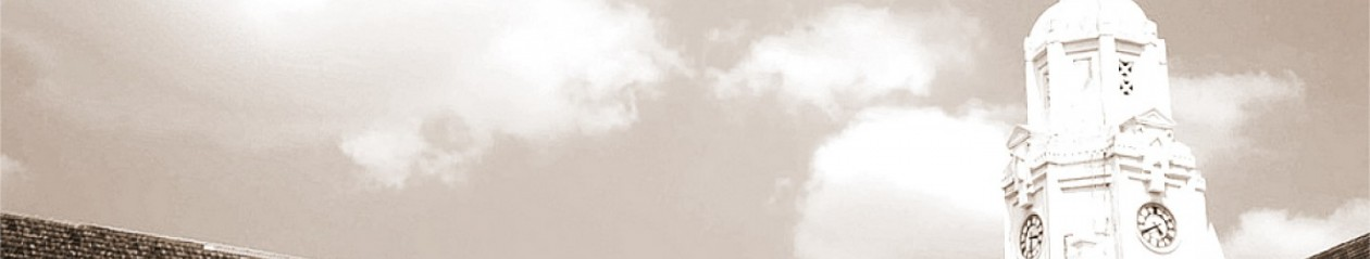 VIOBA