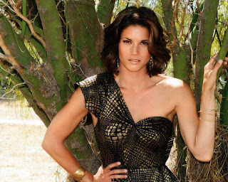Missy Peregrym HD Wallpapers