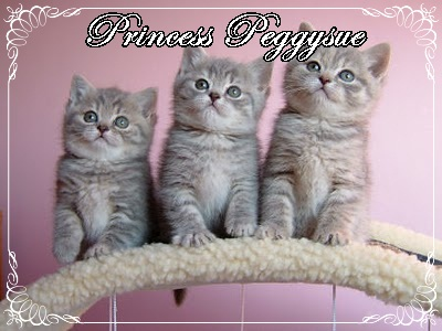Princess PeggySue & Princess Calay~