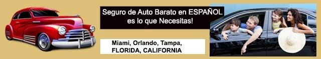En Español Seguros de Autos en Miami
