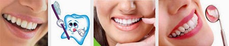 Makanan Untuk Menguatkan Gigi Secara Alami  Makanan Untuk Menguatkan Gigi Secara Alami & Sehat