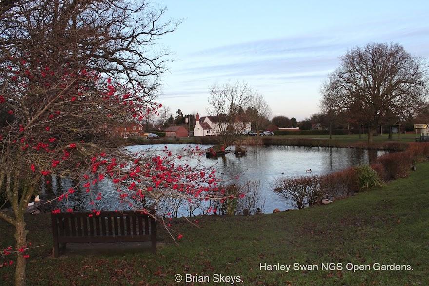 Hanley Swan NGS Gardens.