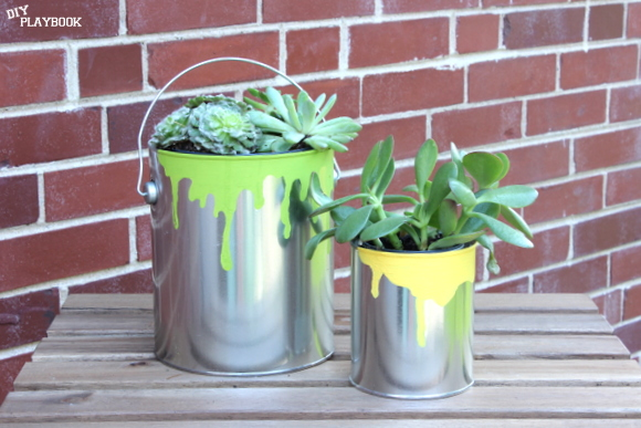 Fill these paint can planters with easy-to-care-for succulents for a fun low-maintenance Father's Day gift.