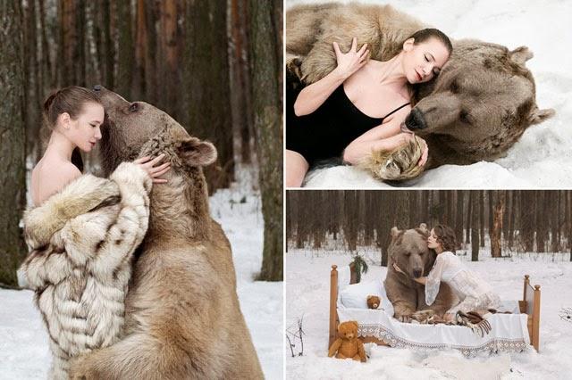 Beruang Raksasa Rusia