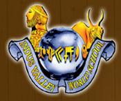 Indus Valley World School Panchasayar Logo