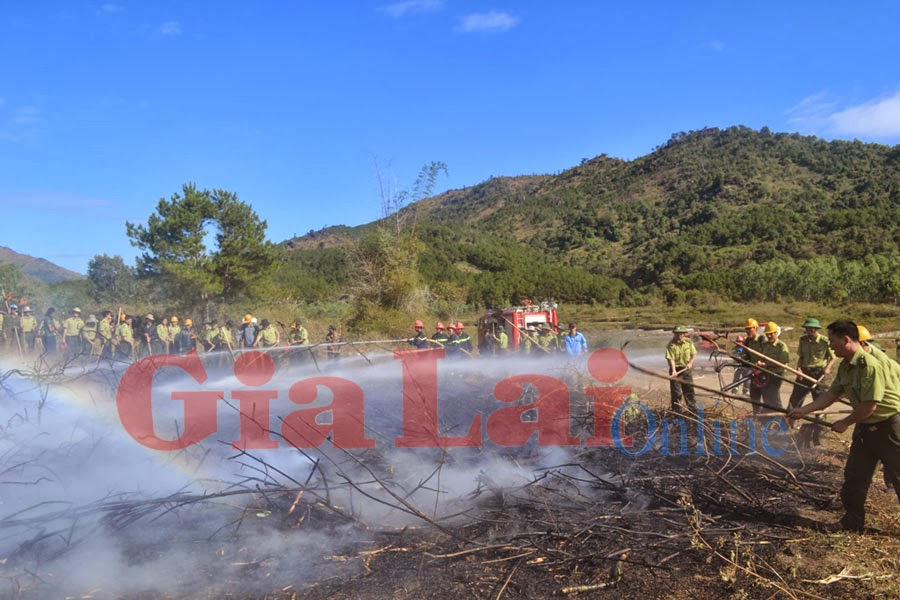 Gia Lai: Diễn tập chữa cháy rừng cấp tỉnh