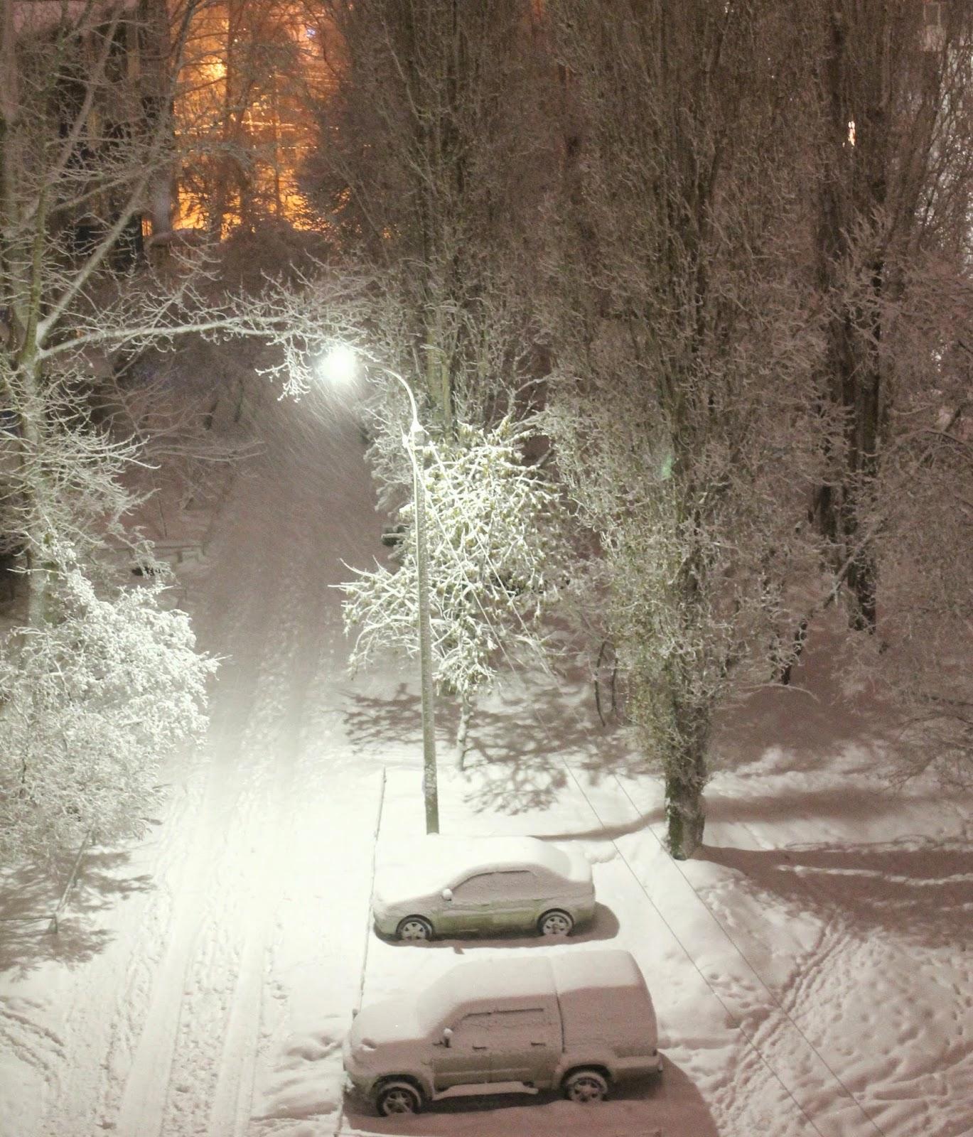 зимний город, елочный шарик, зимний лес, зимняя сказка, шишки, шары, поздравления
