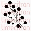 http://boutique.limecitron.com/boutique/index.php?route=product/product&path=49_67&product_id=676