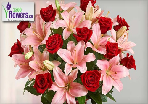 Wagjag 1-800-Flowers Valentine's Day $20 for $40 towards Flowers & Gift Baskets