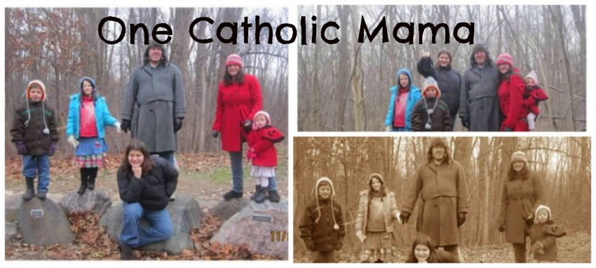 One Catholic Mama