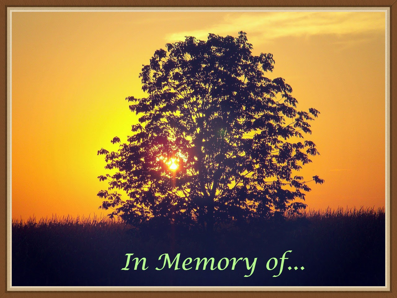 The Book Of Me: Prompt 68 --Memory Tree  How Did I Get Here? My Amazing Genealogy Journey