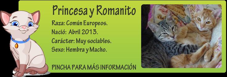 http://mirada-animal-toledo.blogspot.com.es/2014/02/princesa-y-romanito-adopcion-conjunta.html