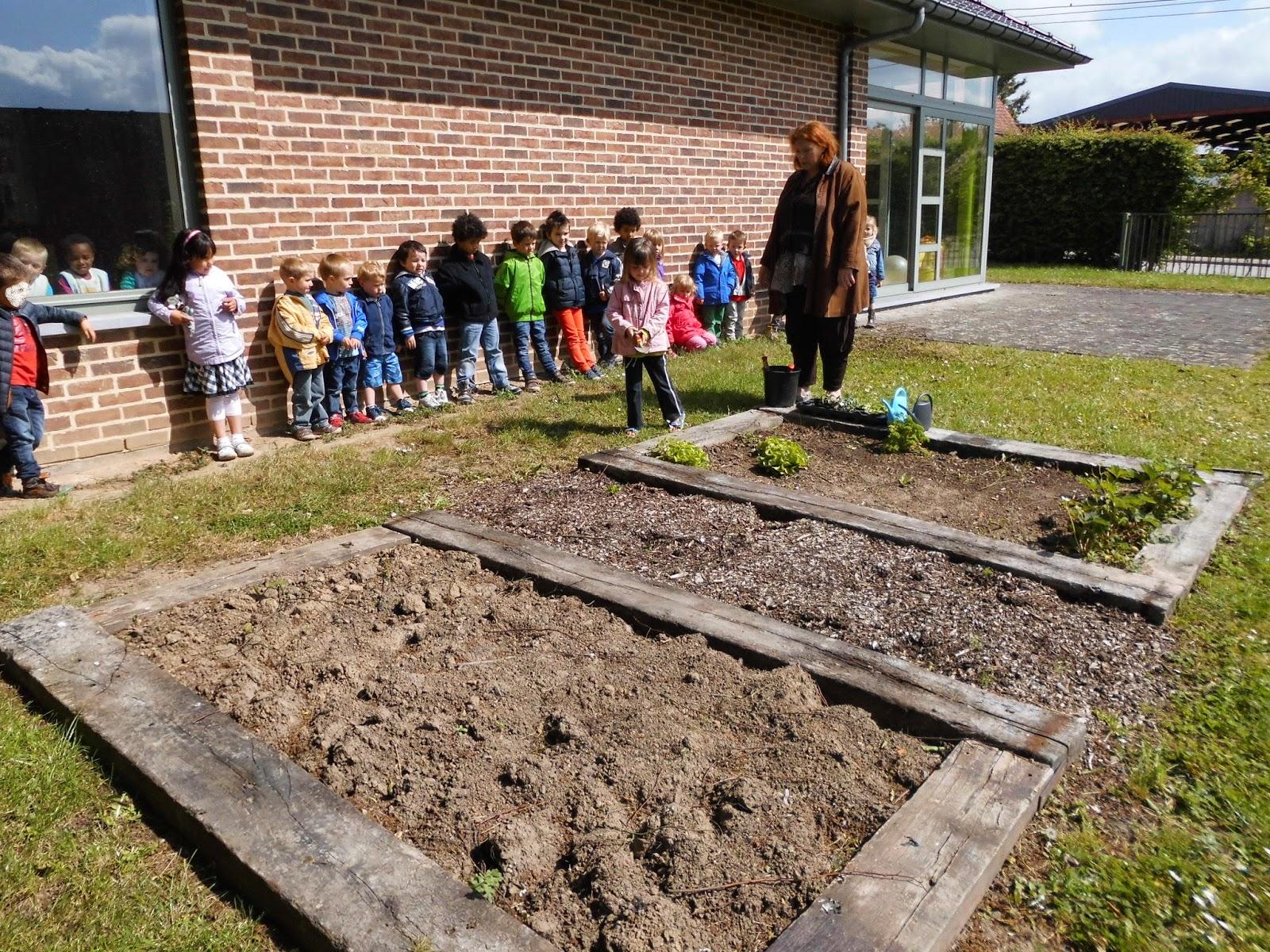 Ecole communale maternelle le nid houtaing jeudi 15 mai plantation dans le jardin for Jardin plantation