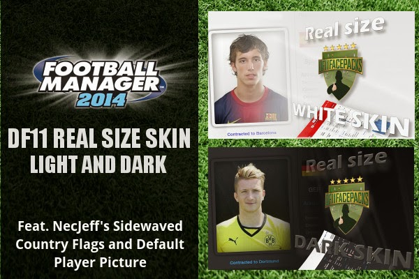 Football Manager 2014 Real Size Skin