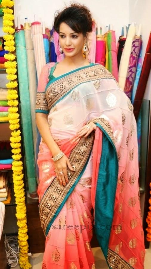 Deeksha panth in chiffon saree