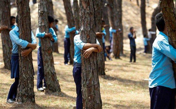 بالصور تعرف على السبب الذى يجعل سكان مدينة نيبال يحضنون الشجر بهذه الطريقه