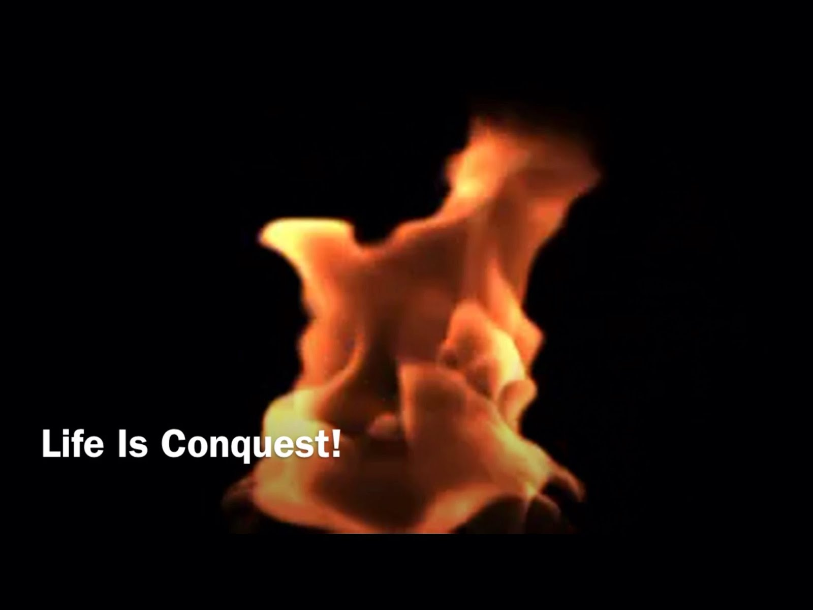 Life Is Conquest! (Video)