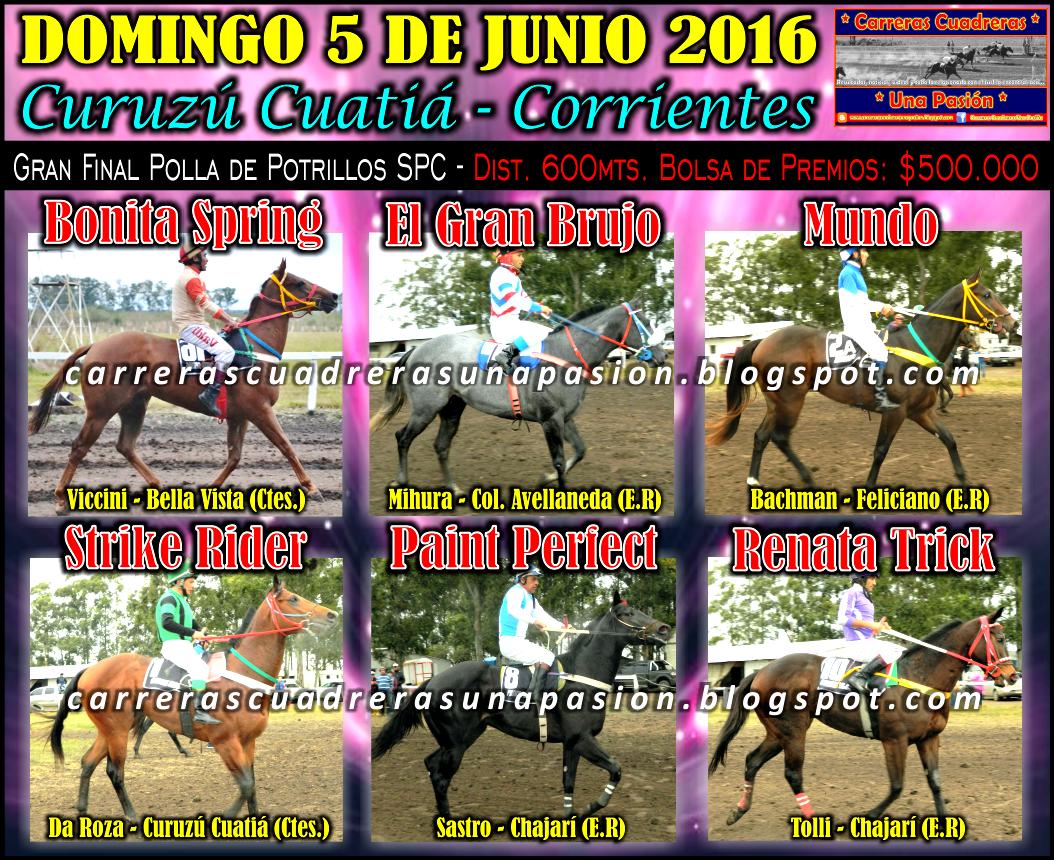 FINAL DE POTRILLOS SPC