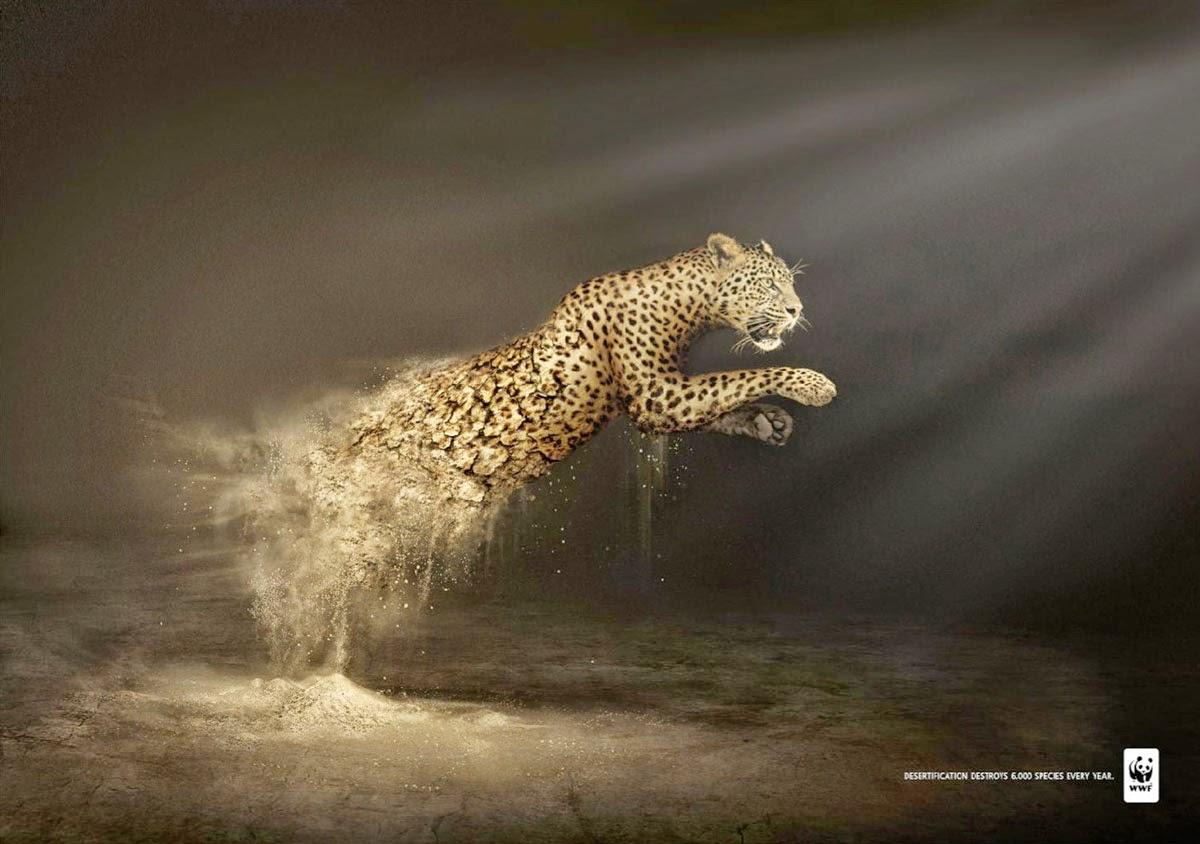 désertification détruit plus de 6000 espèces