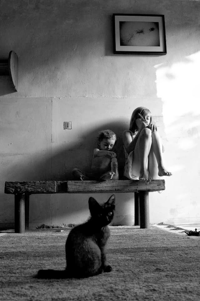 the cat ladies   u00a9 alain laboile