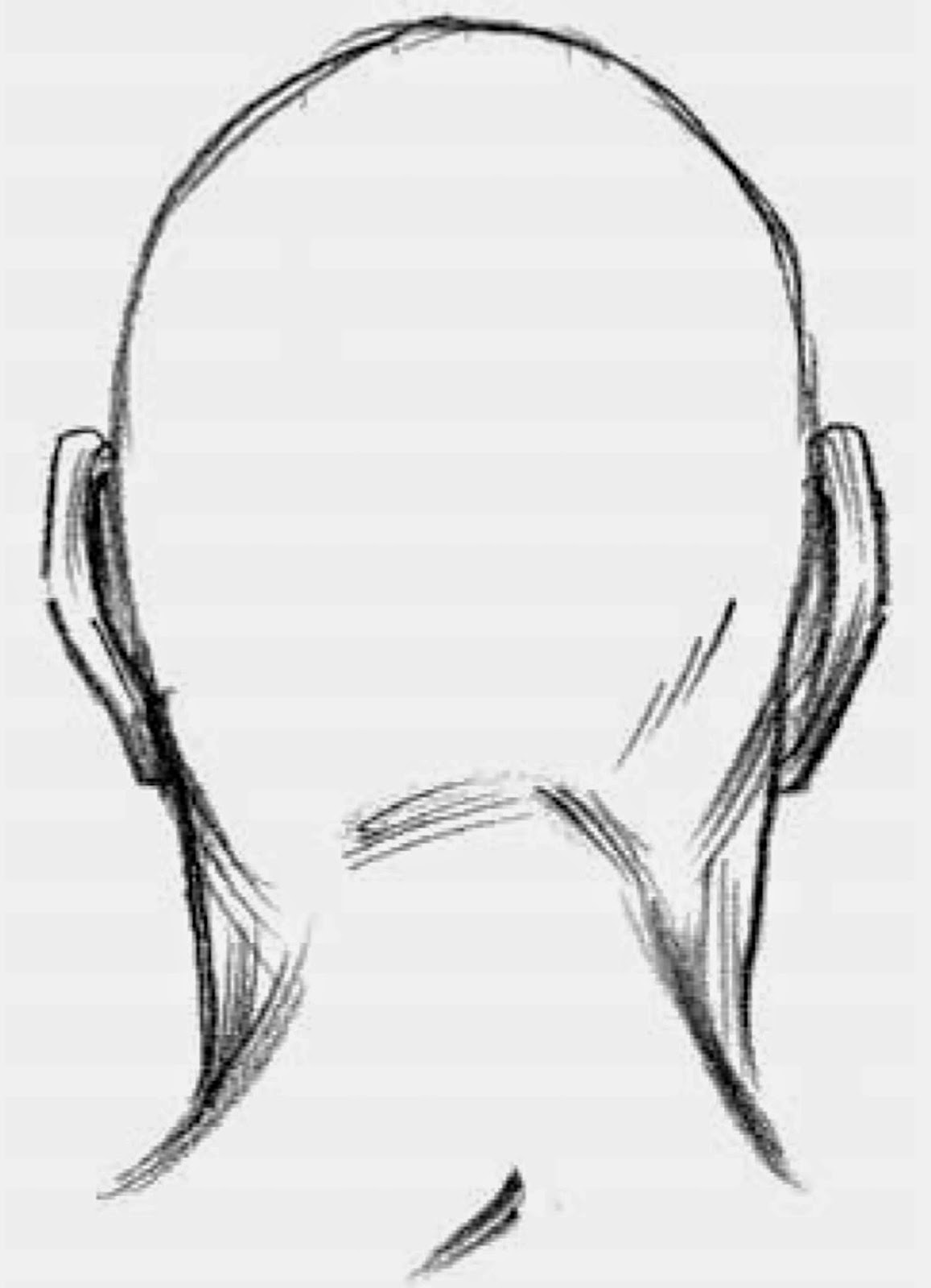Back Head Drawing Drawing The Shape of The Head