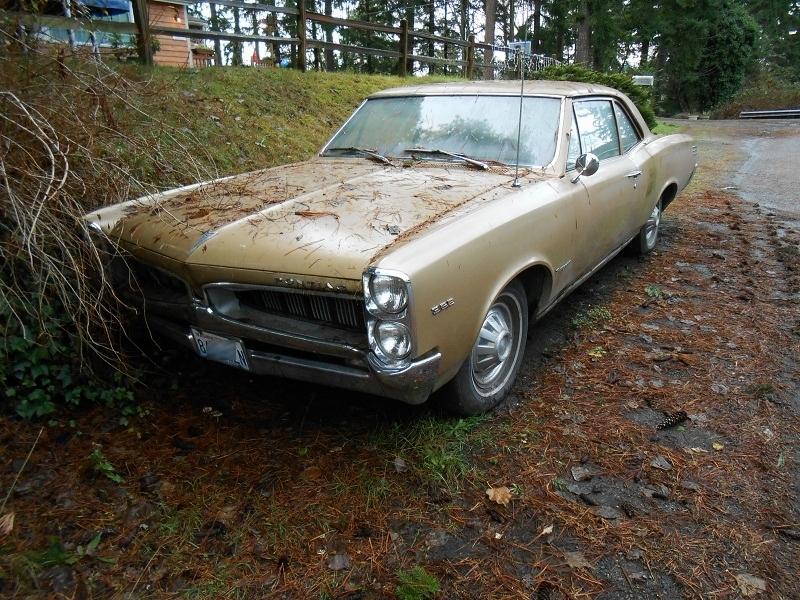 seattle 39 s parked cars 1967 pontiac tempest. Black Bedroom Furniture Sets. Home Design Ideas