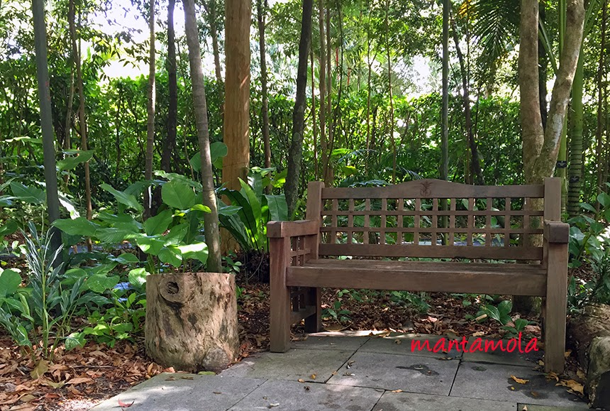 SBG Ginger Garden