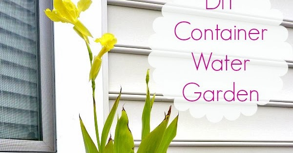 Diy Container Water Garden Diy Craft Projects
